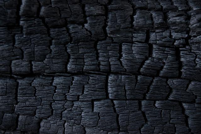 zhorené drevo.jpg