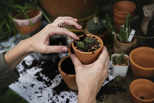 Dušou záhradkár