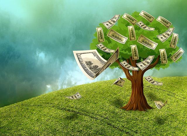 strom obrastený peniazmi.jpg